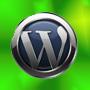 website blog for WordPress CMS system